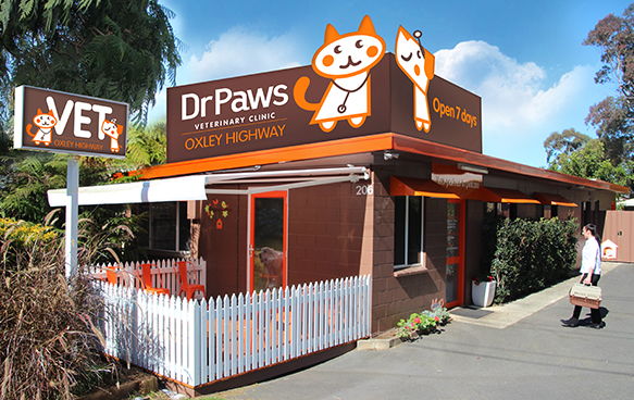 Dr Paws Port Macquarie